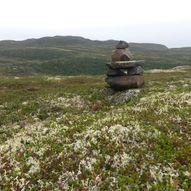 Lett topptur til Kisteåsnatten 1056 moh