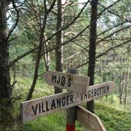 Rundtur Villanger-Svena-Villanger