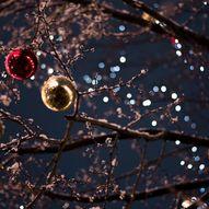 Hadeland Glassverks julemarked