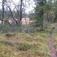Tur til Fagerdalen i Gol kommune