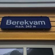 Pudder og tog...og litt lyng - i Flåmsdalen