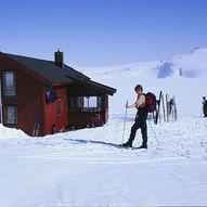 På ski fra Hunnedalen til Tomannsbu