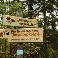 Tjuvenborgen – Partisanersteinen