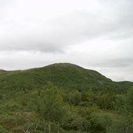 Til topps på Storheia fra Grønlia, 565 moh.