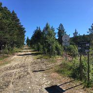Dombåsmorkje rundt - flott rundtur nær Dombås