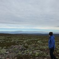 Fulufjellet Nasjonalpark