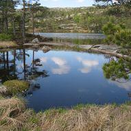 Rundt Maristjenn i Gjerstad