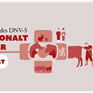 DNV-S internasjonalt fagseminar 2021 / Digitalt seminar 6+7.mars