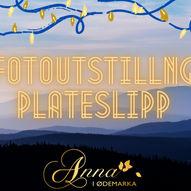 UTSTILLING OG PLATESLIPP