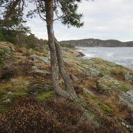 Kyststien i Bamble: Rognstranda - Åby
