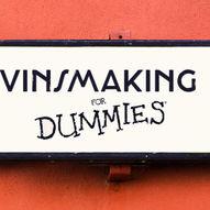 Vinsmaking for Dummies