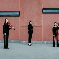 Social B.A.N. - en klassisk konsert med Trio Perone