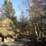 Rundtur i Baneheia rundt de tre stampene og rundt Bånetjønn