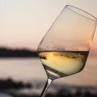 Mathallens vinklubb: Chardonnay fra hele verden