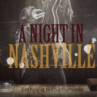 A Night In Nashville - Ole André Westerheim med band