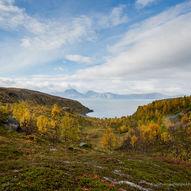 Vorterøya i Skjervøy kommune.