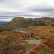 Gurigjerdet- Badnavatnet- Stølanuten (577 m.o.h.)