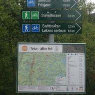 Urvassrunden fra Åmotsveien