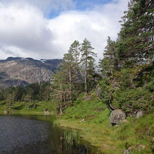 Åkrafjorden rundt (Åkra-Vetrhus-Hjortedalen-Rullestad-Sandvasshytta