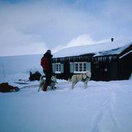 Vennlig vintertur sør for Rondane
