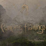 Pumping Flamingo