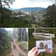 Kort topptur til Kåfjelltoppen