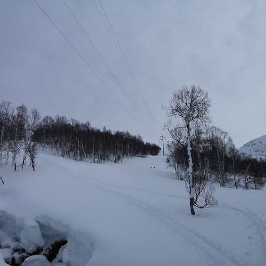 Akslene / Nautefjellet (724 moh)