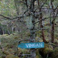 Vingvegen - gammel kløvvei mellom Osen og Vingan