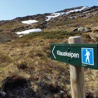 Grytadalen - Dyrelifjellet, 667 moh Rundtur