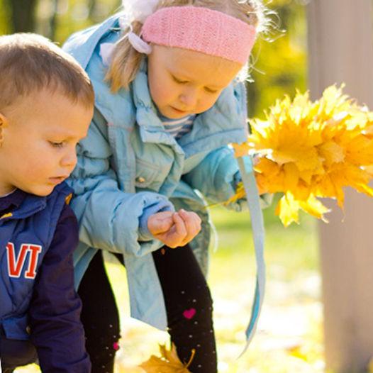 Gå på jakt etter farger - Gratis nedlastning - Gøy med høst