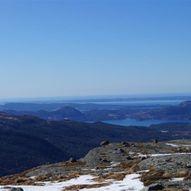 Gråhorgja frå Leite (740 moh.)