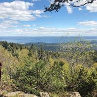 Topptur til Bergsåsen (459 moh.)