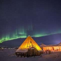 Middag i reinsdyrleir med mulighet for å se nordlyset i Tromsø