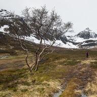 Tur til Dalbotnen i Grunnfjorddalen på Arnøya