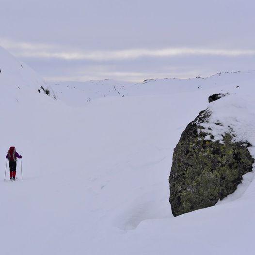 Tomannsbu til Støle på ski