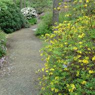 Arboretet på Milde
