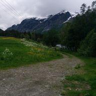Den Trondhjemske postvegen i Langedalen