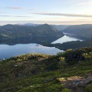 Flordalen - Jamnesåta