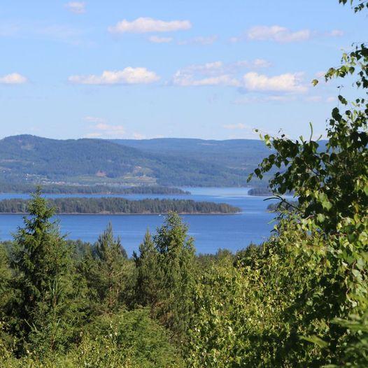 Sykkeltur rundt Bjelker -  Svarttjennet - Viksløkka