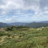 Rindafjellet 715 moh