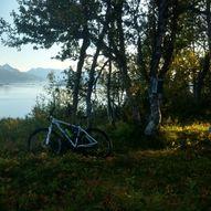 Sykkeltur Vangsvikfjellet rundt