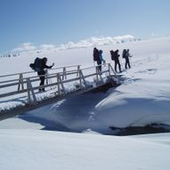 Barnevennlig skitur i Huldreheimen