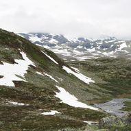 Vikastølen - Bjørnabu
