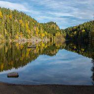Skogstur fra Stampetjernet til Bjørnholen