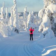 Ugledalen-skitur