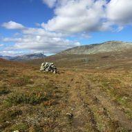 Fjellstølatn - Hølstein - Hulbak 9 km