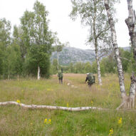 Nedre Breivatn-Lomsdalen