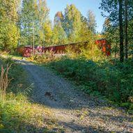 Skogstur til Hotvettjern og Rudskulen
