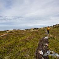Hellnesodden på Laukøya
