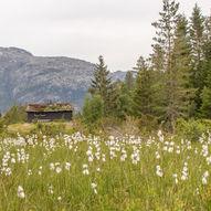 Rullestad-Ramnanuten-Vaulo-Langfoss